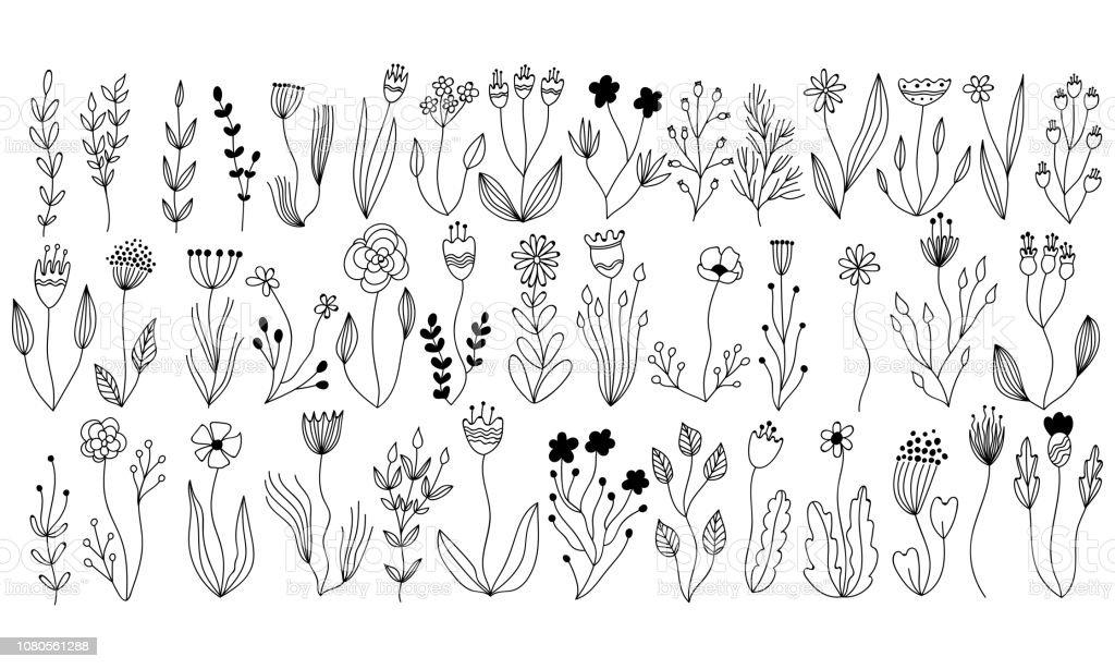 vector botanische collectie van bloemen en kruiden elementen. geïsoleerde vector planten, takken en bloemen met inkt schets ontwerp. Botanische hand getrokken doodle set voor kaarten, uitnodigingen, logo, diy projecten - Royalty-free Abstract vectorkunst