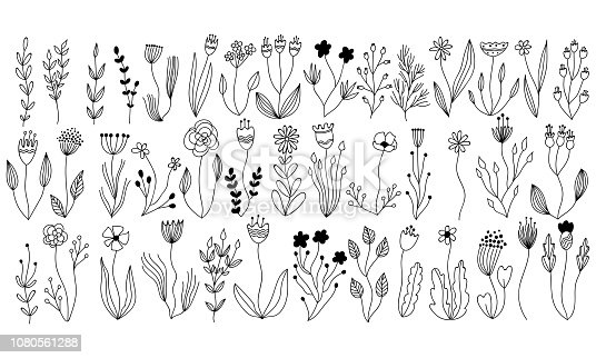 linear vector botanical collection of floral and herbal elements. isolated vector plants, branches and flowers in ink sketch design. hand drawn botanical doodle set for cards, invitations, logo, diy projects, prints and posters in line art.