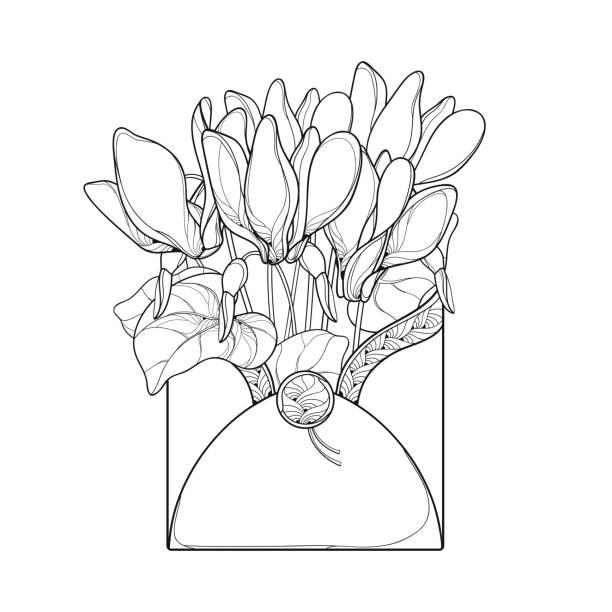 vektor-bouquet mit outline alpenveilchen oder alpine violett haufen, knospe und blatt im umschlag in schwarz auf weißem hintergrund isoliert. - alpenveilchen stock-grafiken, -clipart, -cartoons und -symbole