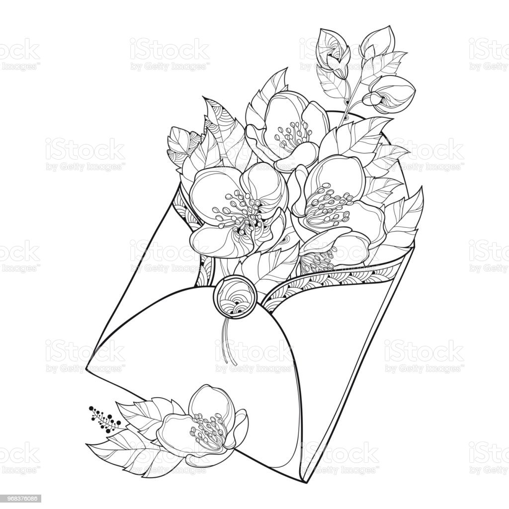 Vector Bouquet With Outline Jasmine Flower Bunch Bud And Ornate Leaf