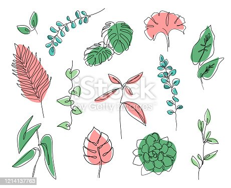 Continuous line leaves print tropical palm, eucalyptus, monstera, succulent, house plants. Abstract botanical set of line leaves. Tropical jungle leaves and various shapes.