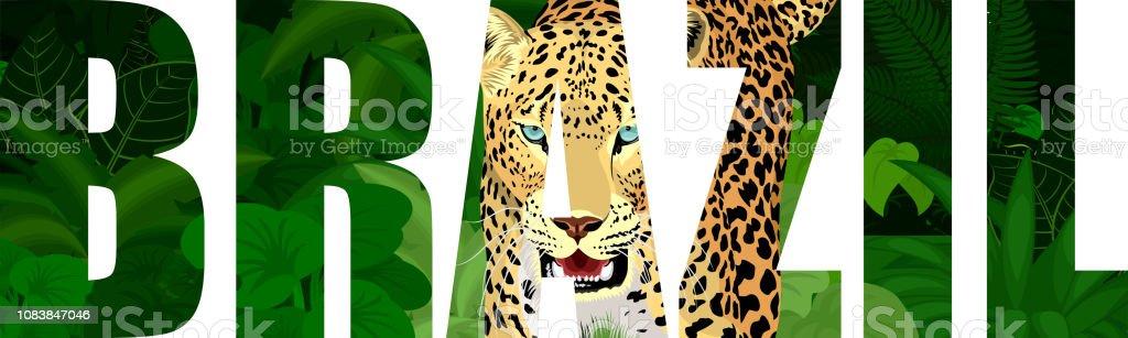Vector a ilustração do Brasil com jaguar - ilustração de arte em vetor
