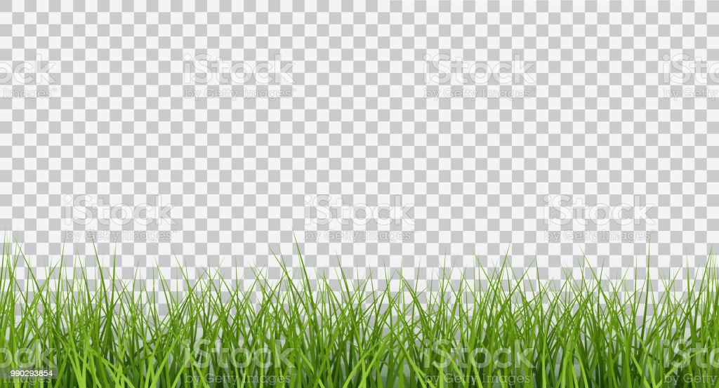 grass border no background animated vector bright green realistic seamless grass border isolated on transparent background royaltyfree vector bright green realistic seamless grass border isolated on