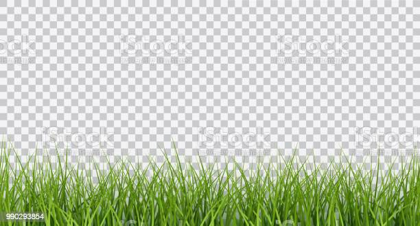 Vector bright green realistic seamless grass border isolated on vector id990293854?b=1&k=6&m=990293854&s=612x612&h=9s5mnk3xqy3pf6ywxlhvjx9cwzypo3fkvs5oivtwqwc=