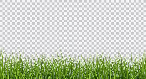 Vector Bright Green Realistic Seamless Grass Border Isolated On Transparent Background — стоковая векторная графика и другие изображения на тему Абстрактный