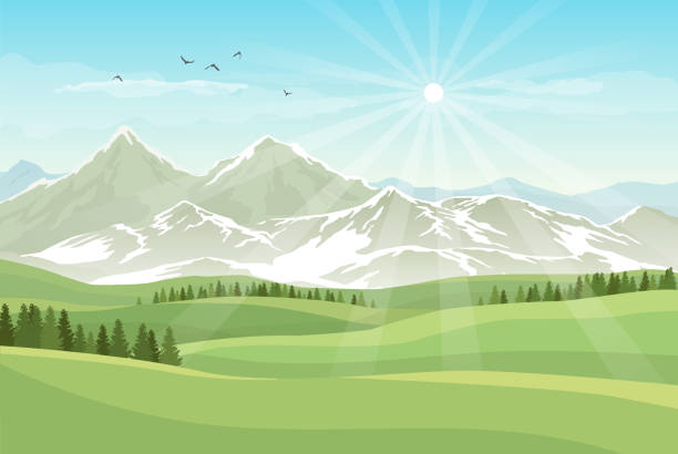 Vector bright landscape with green meadows, forests, mountains with snow and shining sun in blue sky Vector bright landscape with green meadows, forests, mountains with snow and shining sun in blue sky valley stock illustrations