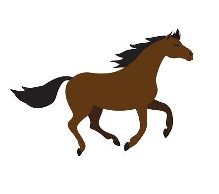 Vector brown bay flat cartoon horse galloping