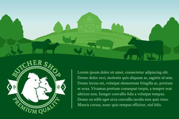 ilustrações, clipart, desenhos animados e ícones de ilustração em vetor açougueiro loja - animais da fazenda