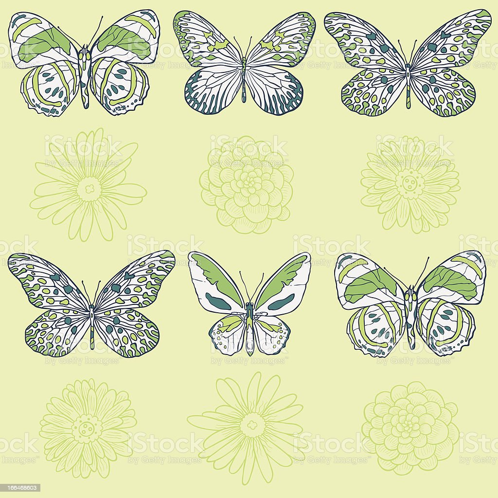 Vector butterfly pattern royalty-free stock vector art