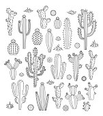 Vector cactus icons