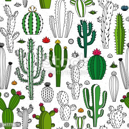 Vector home cactus seamless pattern. Different types of cactus plants mono line icons.