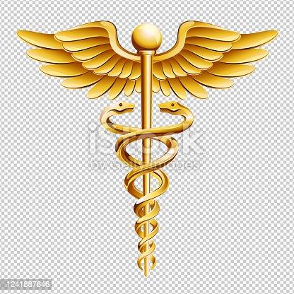 istock Vector Caduceus Medical Icon 1241887646