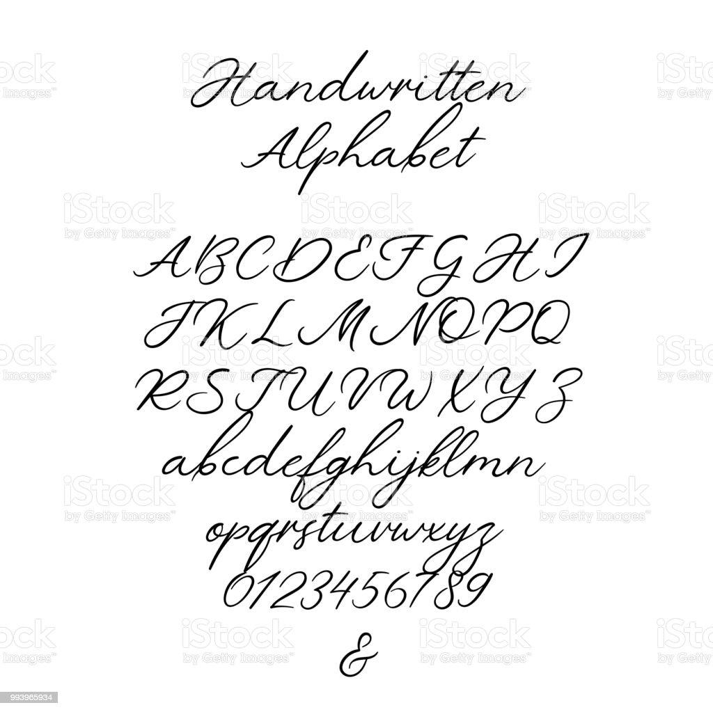 Vector Calligraphy Alphabet Exclusieve Letters Decoratieve