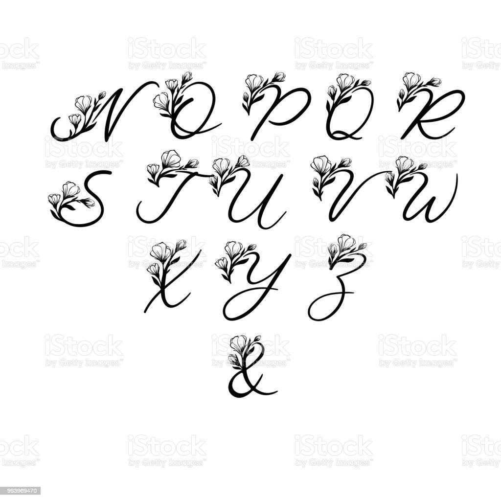 Alphabet De Vecteur De Calligraphie Lettres Florales Polices