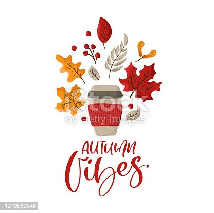 Vector calligraphy lettering text Autumn Vibes with illustration of knitted mug and fall orange leaves. Template for greeting card, invitation and illustration for boor or children magazine.