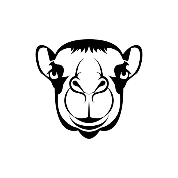 Illustration Of Camel And Badge Design Illustrations