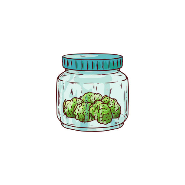 Vector cannabis leaves, green weed, hemp icon Vector cannabis ripe buds in glass jar sketch icon. Green hemp plant, ligalized smoking drug symbol, marijuana herb, can be used in medical design. Isolated illustration bud stock illustrations