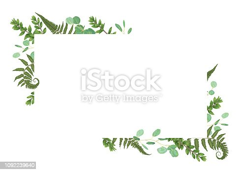 Vector card floral design with green watercolor, eucalyptus, forest fern, herbs, eucalyptus, branches boxwood, buxus, botanical green, decorative horizontal frame, square. Cute greeting, postcard template, wedding invite