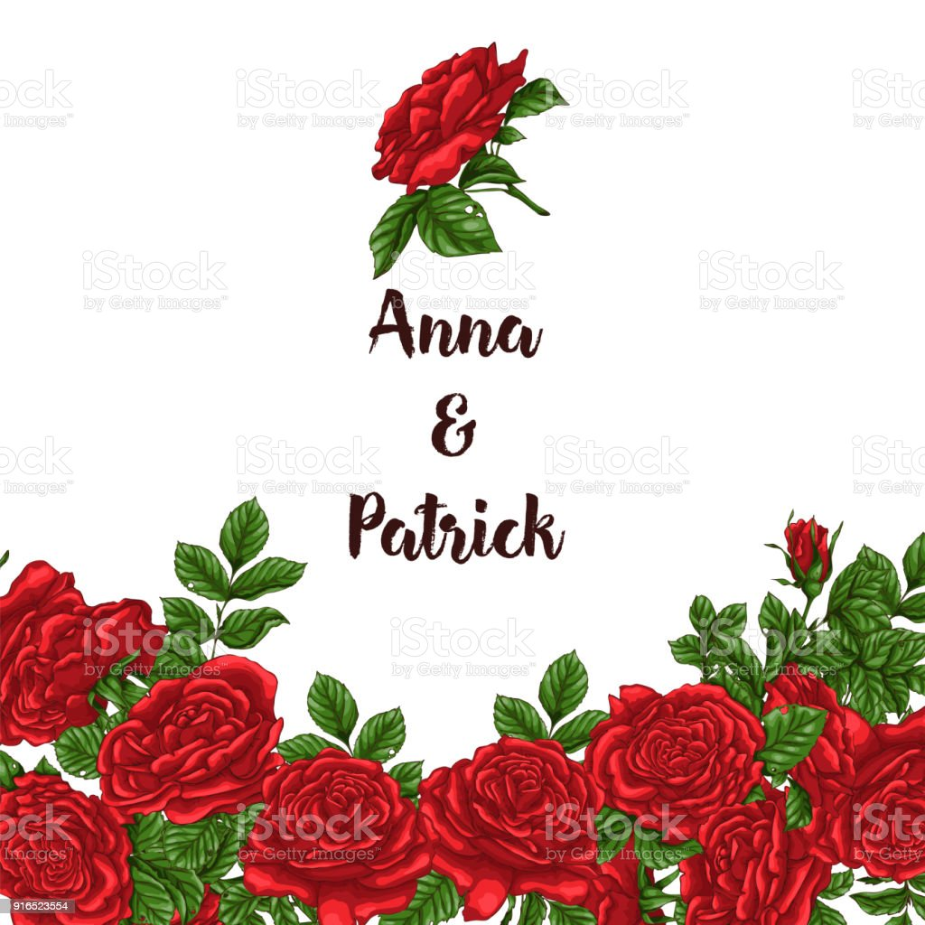 Vector Card With Garden White And Red Roses And Tulip Flowers On