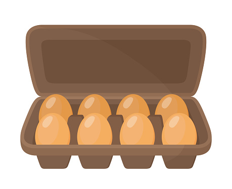 Vector cardboard container for chicken eggs. Brown box, package