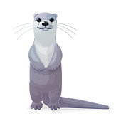 vector cartoon animal clipart: river common otter