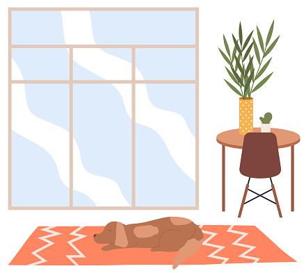 Vector cartoon background of living room with window and a brown dog lying on the carpet