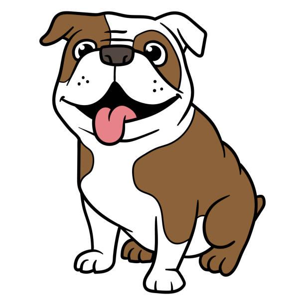 bildbanksillustrationer, clip art samt tecknat material och ikoner med vektor tecknad bulldog - bulldog