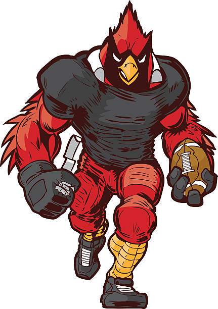vector cartoon cardinal football player mascot in uniform - cardinal mascot stock illustrations, clip art, cartoons, & icons