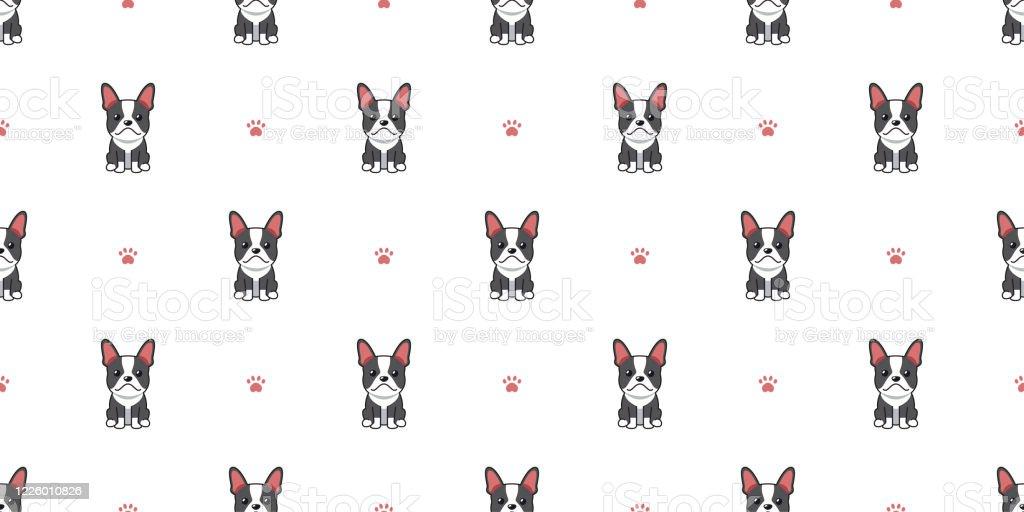 Vector Cartoon Character Boston Terrier Dog Poses Set Royalty Free Cliparts,  Vectors, And Stock Illustration. Image 104174815.