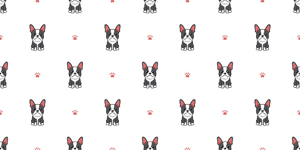 French bulldog - Animals Characters | French bulldog, Baby french bulldog,  French bulldog tattoo