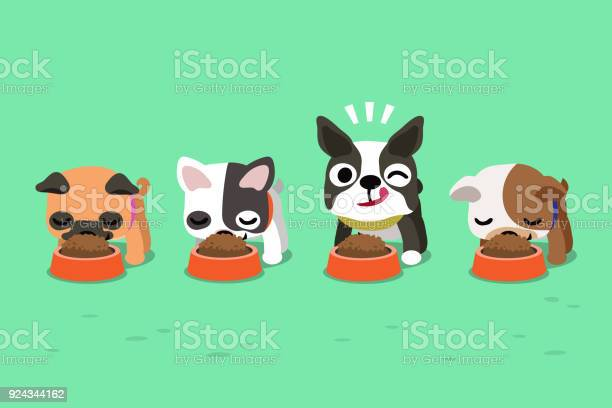 Vector cartoon cute dogs with food bowls vector id924344162?b=1&k=6&m=924344162&s=612x612&h=pulfdqzcds lm2aqhg wufl riyjeacjijypav wb7i=