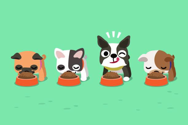 ilustrações de stock, clip art, desenhos animados e ícones de vector cartoon cute dogs with food bowls - eating