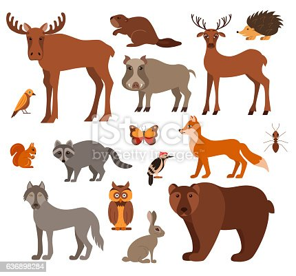 Vector set of forest animals made in cartoon flat style. Zoo collection of fox, wolf, bear, moose, hedgehog, reindeer, owl, boar, raccoon, woodpecker, hare. All elements are isolated