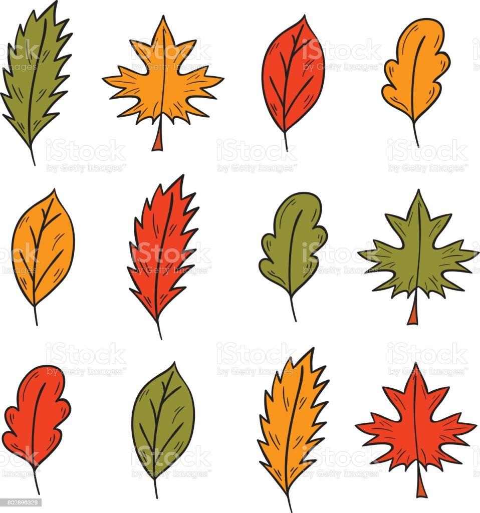 Ilustración De Hojas De árbol Otoño Dibujado Mano De Dibujos