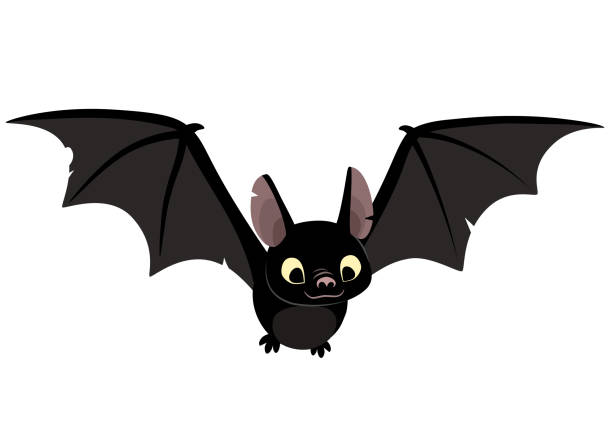 vector cartoon illustration of cute friendly black bat character, flying with wings spread, in flat contemporary style isolated on white. - bat stock illustrations, clip art, cartoons, & icons