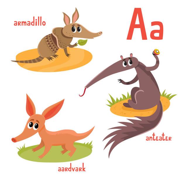 vektor-cartoon-illustration von exotischen wilden tieren isoliert auf weiß - ameisenbär stock-grafiken, -clipart, -cartoons und -symbole