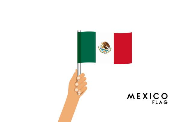 ilustraciones, imágenes clip art, dibujos animados e iconos de stock de ilustración de dibujos animados de vectores de manos humanas sostienen la bandera de méxico. objeto aislado sobre fondo blanco. - bandera mexicana