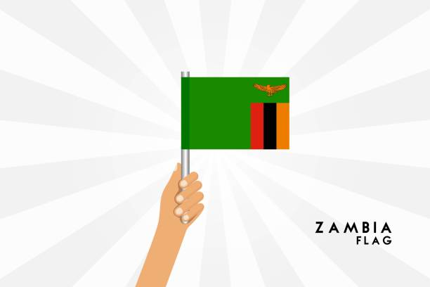Vector cartoon illustration of human hands hold Zambia flag. Isolated object on white background. vector art illustration
