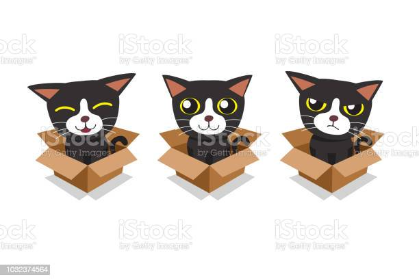 Vector cartoon illustration set of cat in cardboard box vector id1032374564?b=1&k=6&m=1032374564&s=612x612&h=qidwa18711yshh vvizvudpwyzs88co8fdgq9a12klc=
