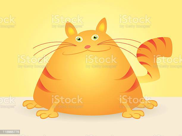 Vector cartoon of fat cat sitting vector id115965775?b=1&k=6&m=115965775&s=612x612&h=zekpowqmwcbvhj3orqtatlzevteuvy hqz5ppxxbgpo=