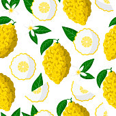 istock Vector cartoon seamless pattern with Citrus medica or Citron exotic fruits, flowers and leafs on white background 1273347664