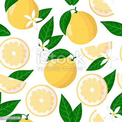 istock Vector cartoon seamless pattern with Citrus Sweetie exotic fruits, flowers and leafs on white background 1273358336