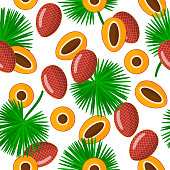 Vector cartoon seamless pattern with Mauritia flexuosa or moriche palm exotic fruits, flowers and leafs on white background for web, print, cloth texture or wallpaper