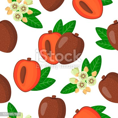 istock Vector cartoon seamless pattern with Pouteria sapota or Sapota exotic fruits, flowers and leafs on white background 1273357351