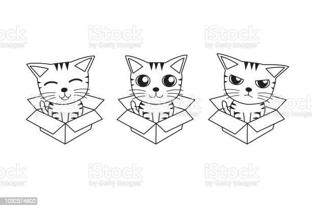 Vector cartoon set of tabby cat in cardboard box vector id1032374602?b=1&k=6&m=1032374602&s=612x612&h=wfkbukedpfy8piokjoolpt9kkqy6qxdg9ba6xo2 clc=
