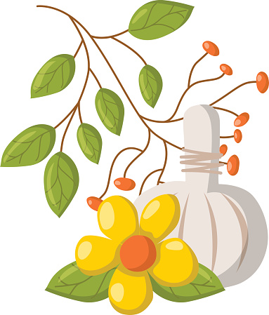 Vector Cartoon Spa Massage Herbal Press Stock Illustration Download Image Now Istock