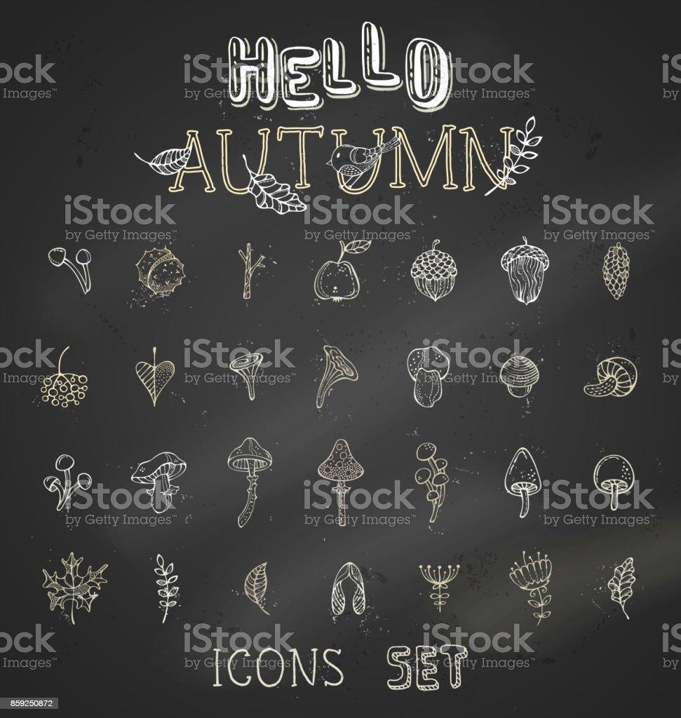 Vector chalk set of autumn icons on blackboard background. vector art illustration