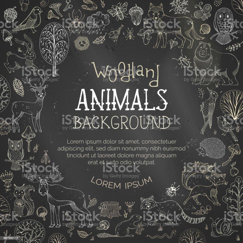 Vector chalk woodland blackboard background. vector art illustration