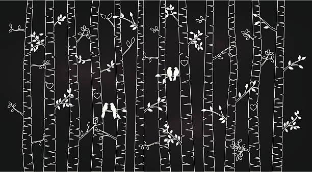 wektorowa, która wygląda jak narysowana kredą birch lub drzew osiki - wood texture stock illustrations