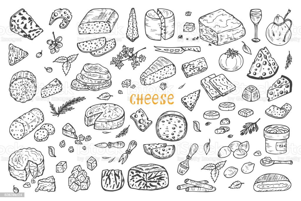 Vector Cheese Set. Hand Drawn Doodle various types of cheese vector art illustration